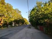 Kechan_kas_Tartu_31-05-2020_01